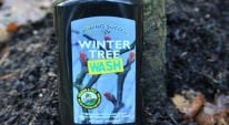 Weekly Kitchen Garden Blog - Glue Bands and Winter Tree Wash