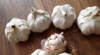 Kitchen Garden Blog - planting garlic cloves and onions sets