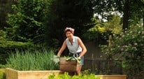 Top 10 Benefits of Growing Your Own Veg in Raised Beds!