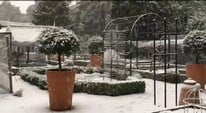 Snowing at the Kitchen Garden!