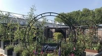 RHS Chelsea Flower Show 2018 - Show Highlights