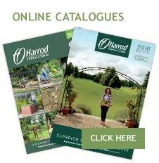 Online Catalogues - content pages