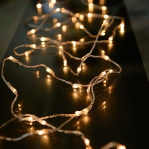 50 LED String Lights