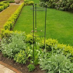 Harrod Tall Circular Plant Supports