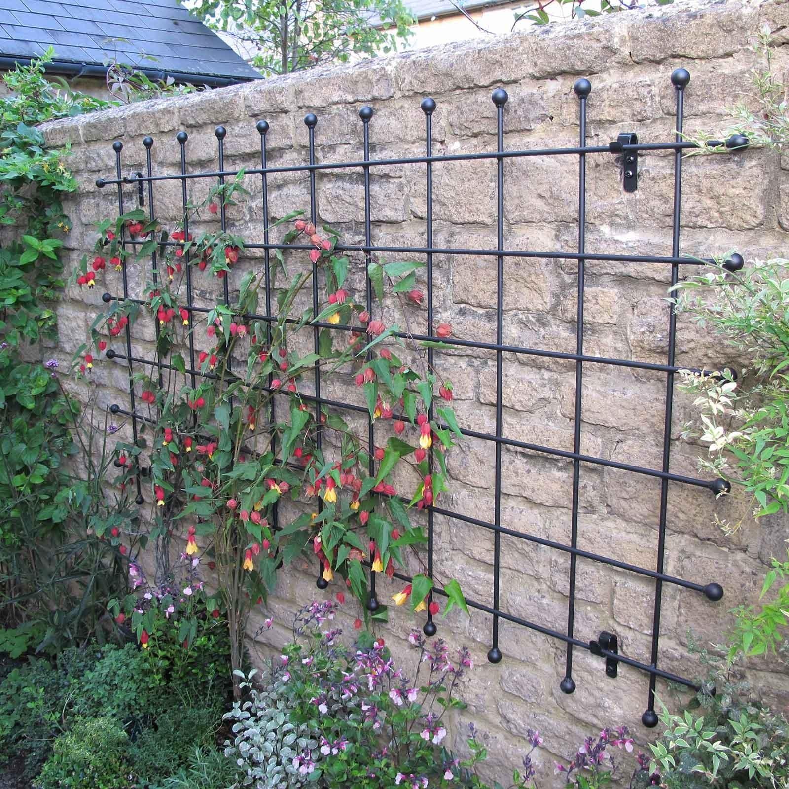 metal garden trellis harrod horticultural. Black Bedroom Furniture Sets. Home Design Ideas
