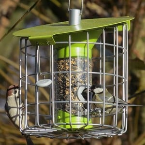 Contemporary Seed Feeder Lime Green