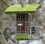 Geohaus Nut Bird Feeder - Lime Green