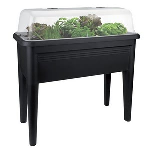 Contemporary Grow House Trough Table And Lid