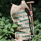 Vegetable Sacks