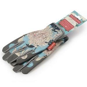 Rhs Chrysanthemum Gloves