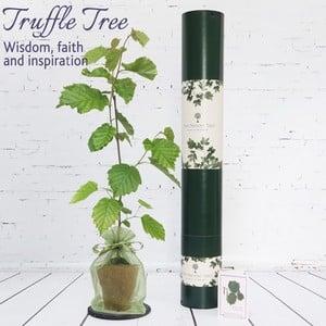 Truffle Tree Gift