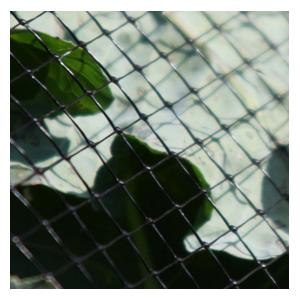 Our Rigid Plastic Mesh Butterfly Netting Is A Heavy-duty Net Available In 2m And 4m Widths And, Whilst Fairly Rigid, Is Also Flexible Enought To Mould