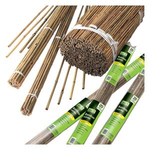 Bamboo Cane Stakes Are A Mainstay Of Any Ornamental Garden, Allotment, Kitchen Garden Or Vegetable Plot, Lending Essential Support To Climbing Plants,