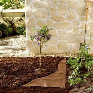Made From An Organic Mulch Fleece Material, The Strong 70gsm Groundcover Also Reduces Water Evaporation Whilst Preventing Weeds. an Ideal Alternative
