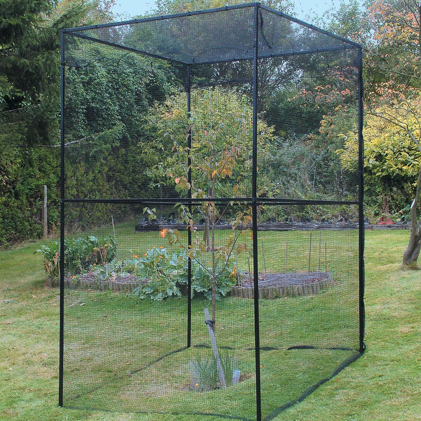 Heavy duty steel cherry tree cage harrod horticultural uk - Protecting fruit trees in winter ...