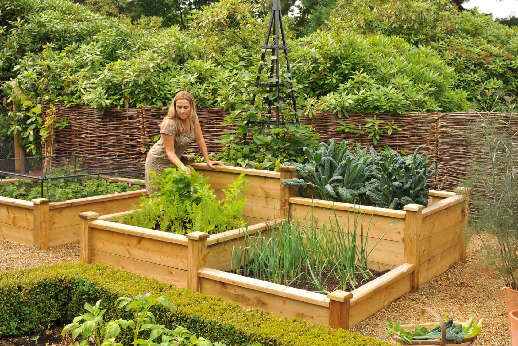 Superior Wooden Raised Beds - Harrod Horticultural