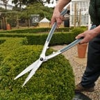 Burgon and Ball Topiary Hedge Shears