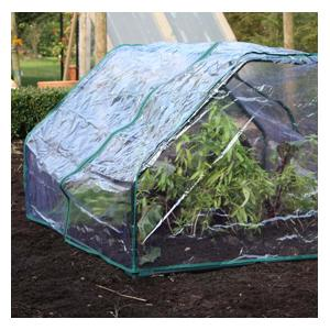 1m Square Cloche Cover Only