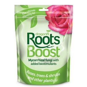 Roots Boost Mycorrhizal