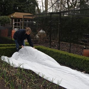 Garden Fleece Is Perfect To Protect Your Plants Against Frost And Also Stops Wind, Hail, Birds And Insects Damaging Your Plants, Strong And Reusable,
