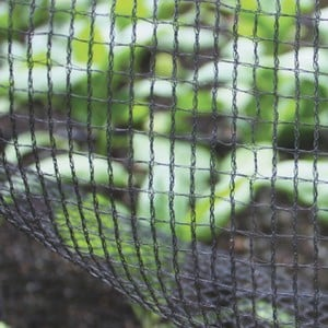 Soft Mesh Butterfly Netting Is Soft To The Touch But Definitely Hard On Butterflies, This Butterfly Netting Is The Ideal Material To Keep Your Home Gr