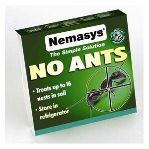 Nemasys 16 Colony No Ants Nematode
