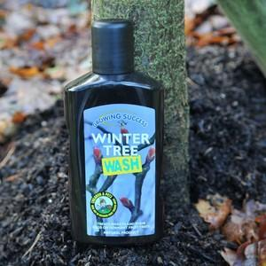 This Natural Winter Tree Wash Is Ideal For Use In An Organic Garden And By Following The Prevention Is Better Than Cure Motto, Your Fruit Trees And Bu