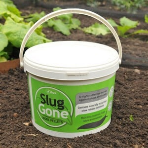 This Environmentally Friendly Way Of Protecting Your Flowers, Plants, Fruit And Vegetables From Slugs And Snails Also Helps To Retain Soil Moisture. a