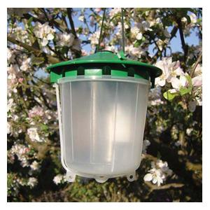 Codling Moth Traps Can Be Used Earlier In The Year (from May Onwards) To Catch And Monitor Male Codling Moths. This Helps Warn Of Caterpillar Attack L