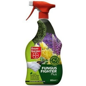 Box Blight Fungus Fighter Is A Systemic Fungicide To Give Long Lasting Control Of Up To 3 Weeks. It Controls Box Blight, White Rust, Blackspot, Mildew