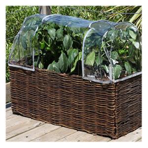 Salad & Herb Planter