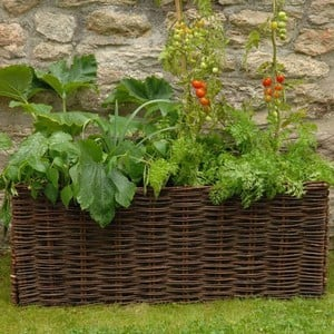 Vegetable & Tomato Planter With Willow Surround