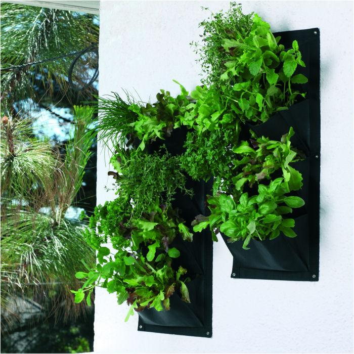 Herb and Salad Vertical Planters Harrod Horticultural UK