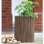 Potato Planters & Willow Surrounds