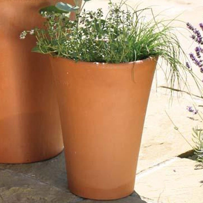 Long Tom Terracotta Pots - Harrod Horticultural (UK) Planters Yorkshire on