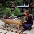 Mini Manger Trough Planter