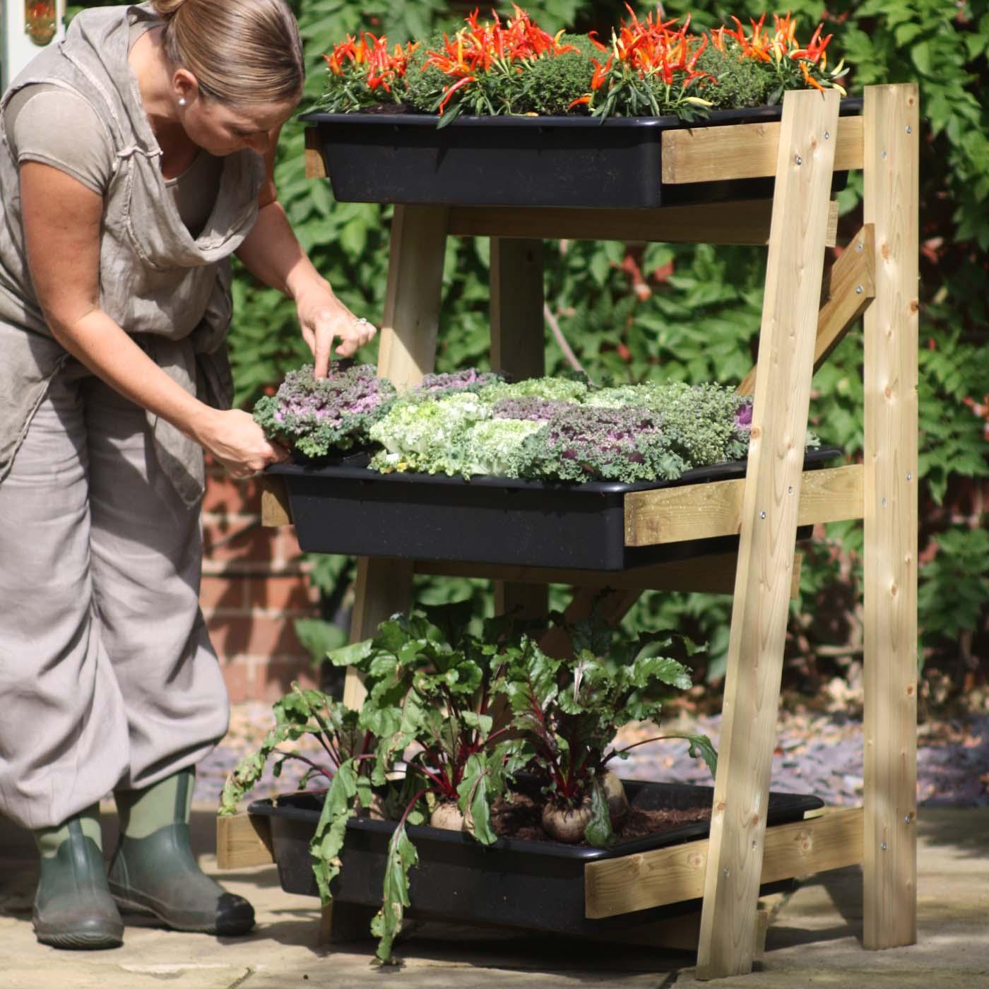 Freestanding ladder vegetable garden planters at harrod for Vegetable garden planters