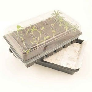 The Seed Tray Of The Propagator Sits Above The Reservoir On A Platform Which Is Covered In Capillary Matting. The Plants Then Draw The Water Up As Req