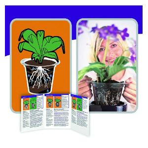 The Plantarium Root Care Pots Are Transparent Plant Pots Designed To Support Themselves In Your Existing Houseplant Container; Simply Lift The Plantar