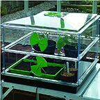 Vitopod Heated Propagator