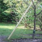 Redwood Plant/Tree Stakes 25mm sq x 1.2m Long 5 Pack