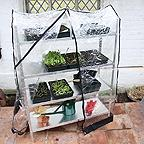 Greenhouse Seed Tray Racks
