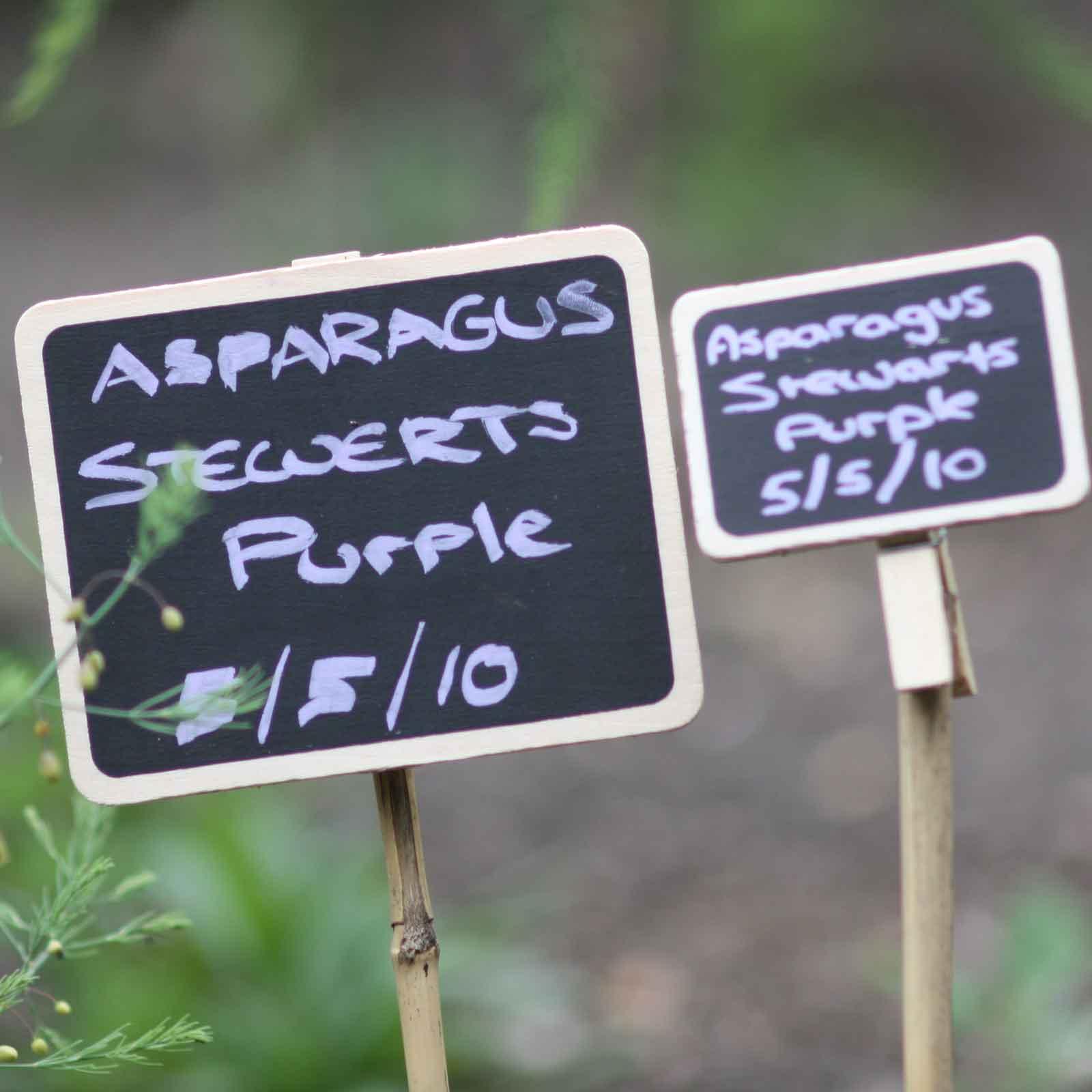 Home Design Ideas Blackboard:  Blackboard Plant Label Clips