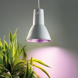 Energy Saving Grow Lamp