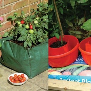 This Offer Is Perfect For Growbag Growers And Includes The Reuseable Grow Bag Which Takes 90ltrs Of Compost And A Set Of 3 Red Plant Halos Ideal For G