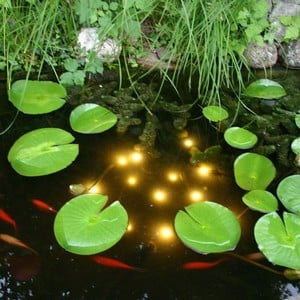 Underwater Pond Light