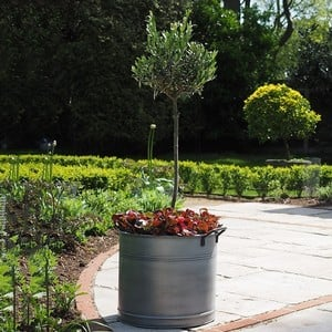 Set Of 2 Round Steel Planters