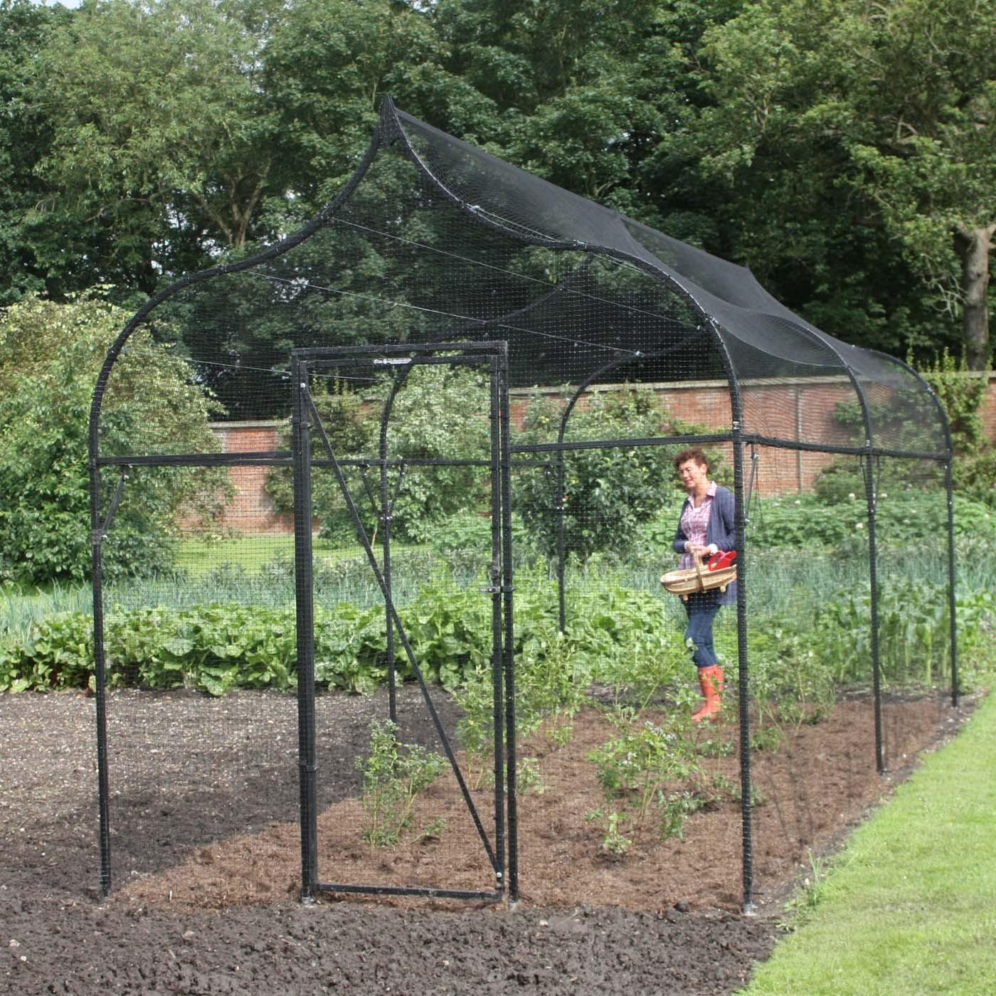 Ogee Arch Fruit Cage Harrod Horticultural
