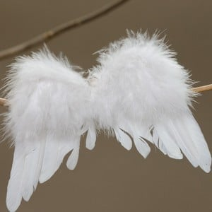 Angel Wings Christmas Tree Decoration By Sia