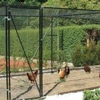 Chicken & Poultry Cage - Heavy Duty Steel